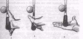 Рис.5. Положения руки при восточной хватке (А), универсальной (Б), западной (В)